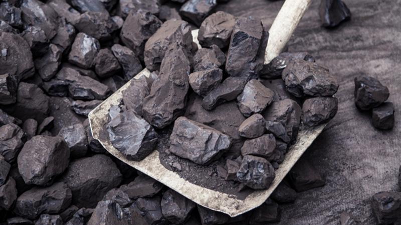 İthal kömür ve meşe odunu alınacak