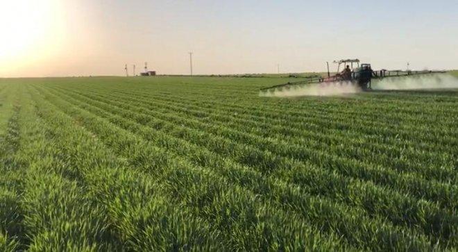 Kurtalan'da buğday ilaçlama dönemi başladı