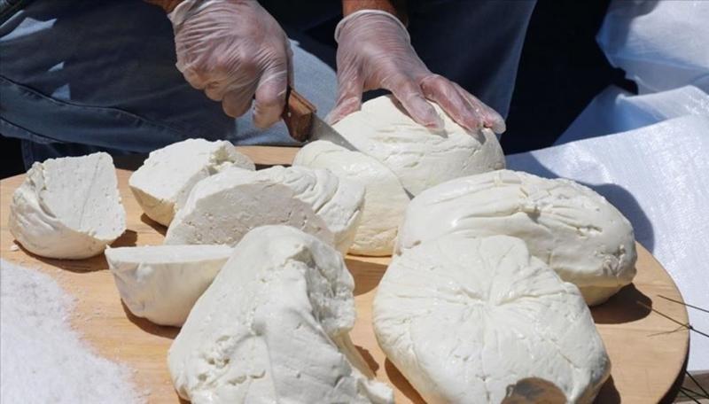 Kurtalan'da Taze Peynir  Sezonu Açıldı