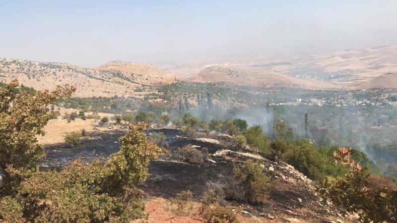 Kurtalan'nin Beykent köyünde ormanlık alanda yangın