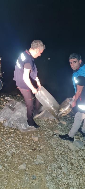 Siirt Genelinde Su Kaynaklarına Bırakılan Yavru Balık Sayısı 2 Milyonu Aştı