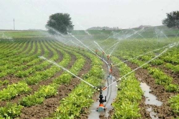 Siirt'te 37 Bin Dekar Tarım Arazisi Sulandı