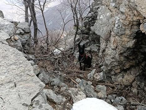 SİİRT'TE PKK'YA AİT 2 EYP BULUNDU