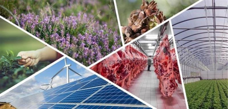 Tarıma dayalı ekonomik yatırım projelerine 1,5 milyon TL'ye varan hibe desteği