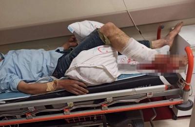 Eruh'ta Ayının Saldırısına Uğrayan Çoban Yaralandı